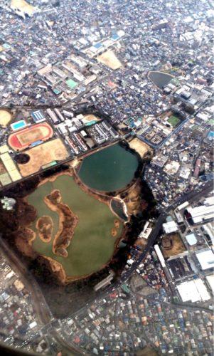 ANA 全日空 昆陽池 池に日本