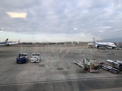 大阪空港発羽田、折形礼法を学びに